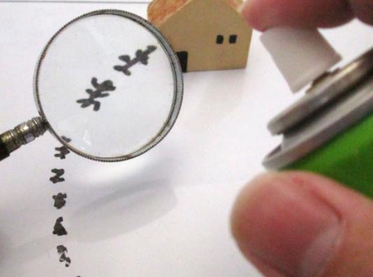 シロアリと黒蟻の蟻道の違い