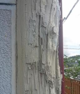 シロアリ被害の参考画像