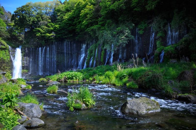 静岡県のシロアリ予防・駆除業者の参考画像