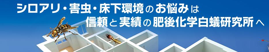 熊本シロアリ業者の参考画像