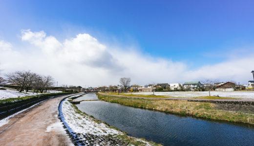 福岡県でおすすめのシロアリ予防・駆除業者は?施工費用の見積もり相場や組み合わせまとめ