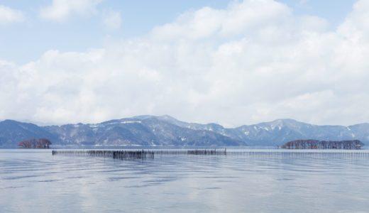 滋賀県でおすすめのシロアリ予防・駆除業者は?施工費用の見積もり相場や組み合わせまとめ